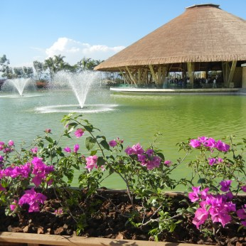 Flowers and fountains abound at Jardines de Mexico.