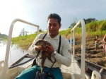Guide Eric Pineda showed us the baby Giant River Otter
