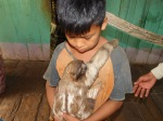 This youngster loves his pet sloth