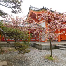 Kyoto 1 018