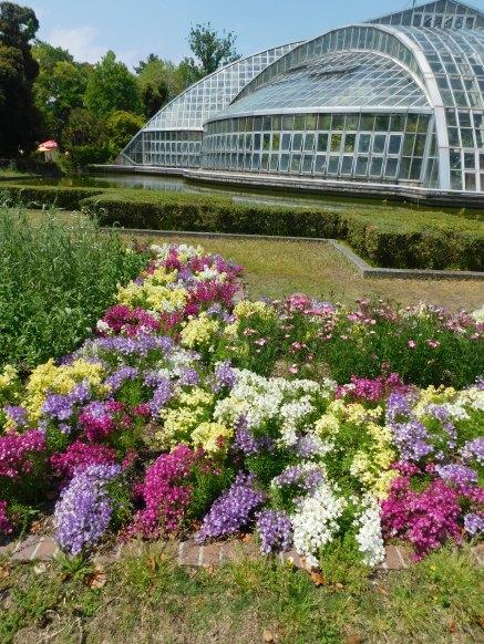 Kyoto botanical garden 003