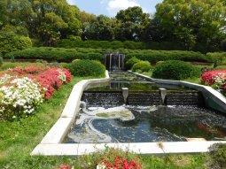 Kyoto botanical garden 023