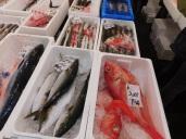 Tokyo Fishmarket & Edo Museum 008