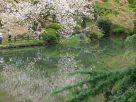 Tokyo Garden 013