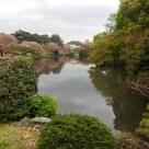 Tokyo Garden 017