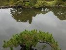 Tokyo Garden 022