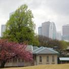 Tokyo Garden 032