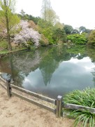 Tokyo Garden 034