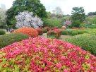 Tokyo Garden 039