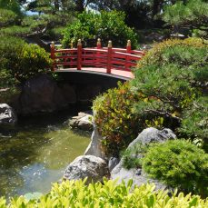 A small Japanese-style garden just off the promenade.