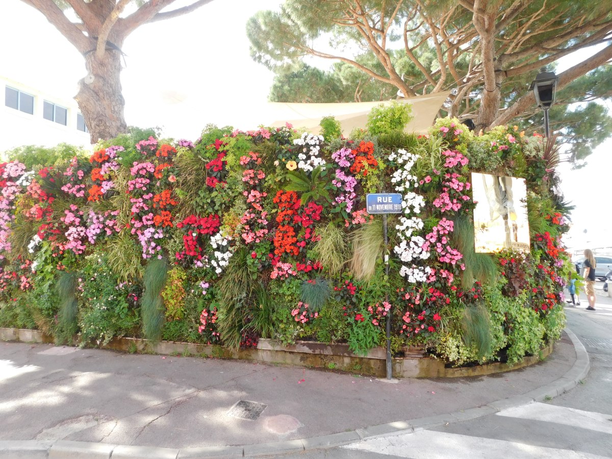 A wall of flowers greets diners at a posh restaurant in Saint Tropez.