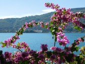 Flowers line the lake-front promenade in Stresa.
