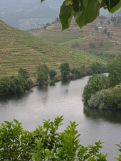 Great views of the river from the winery.