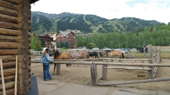 A concession on the ranch provided the horses for a brief trail ride.