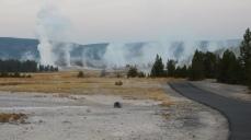The Upper Geyser Basin presents glorious views in the early morning with few tourists.