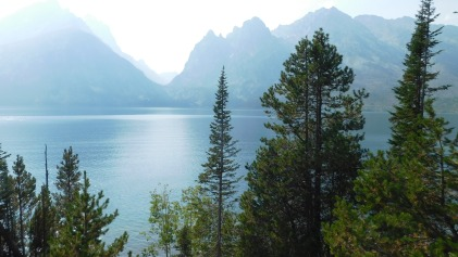 Beautiful Jenny Lake reminded me of scenes in the Canadian Rockies.