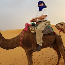 I could have lived without this adventure. The camel behind me took too much of a liking to my rear end and I was afraid he wanted to hump me.
