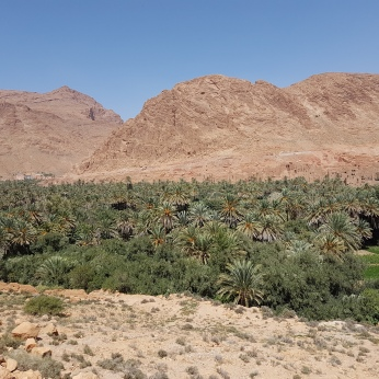 The rather monotonous scenery of the Ziz River Valley, enroute to the Sahara.