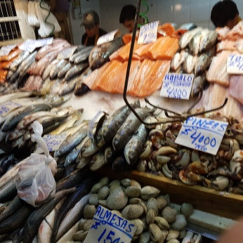 Huge fish and seafood displays similar to those we saw in Puerto Montt.